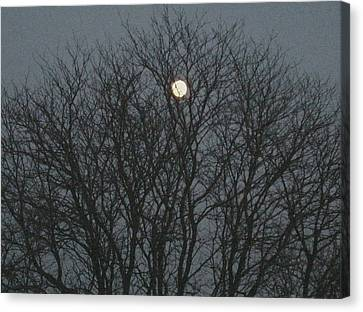 Beautiful Moon Canvas Print
