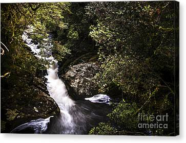 Beautiful Nature Landscape Of A Flowing Waterfall Canvas Print