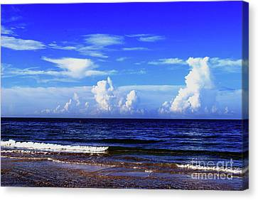 Canvas Print featuring the photograph Beautiful Ocean View by Gary Wonning