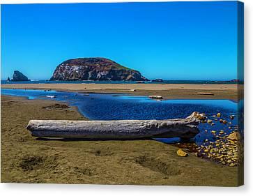 Beautiful Oregon Coastline Canvas Print by Garry Gay