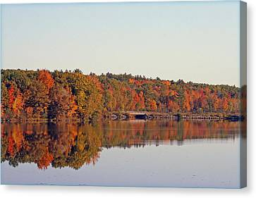 Beautiful Reflections Canvas Print by Kay Novy