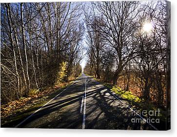 Beautiful Roads In Winters Shadow Canvas Print by Jorgo Photography - Wall Art Gallery