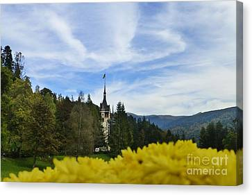 Beautiful Romanian Scenery Canvas Print by Barbie Corbett-Newmin