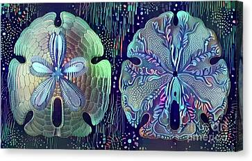 Beautiful Sand Dollars Canvas Print