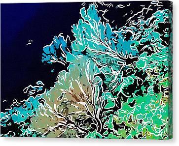 Beautiful Sea Fan Coral 1 Canvas Print