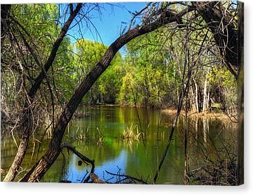 Beautiful Spring Day Canvas Print by Thomas  Todd
