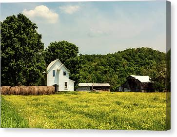 Beautiful West Virginia Canvas Print by L O C