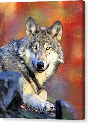Beautiful Wolf Art Canvas Print by Georgiana Romanovna