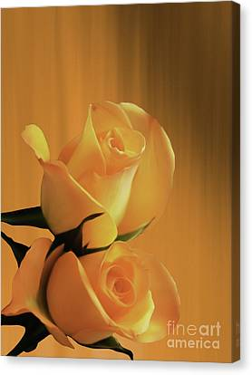 Beautiful Yellow Pair Of Roses  Canvas Print by Gull G