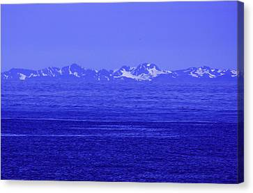 Beautifully Blue Canvas Print by Michael Nowotny
