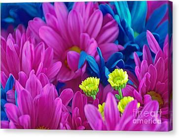 Beauty Among Beauty Canvas Print