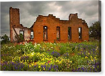 Beauty And Ashes Canvas Print by Jon Holiday