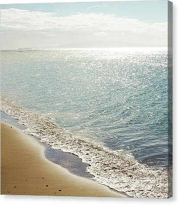 Beauty And The Beach Canvas Print by Sharon Mau