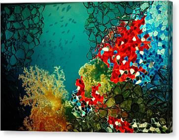 Canvas Print featuring the photograph Beauty Below by Lori Mellen-Pagliaro