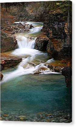 Beauty Creek Cascades Canvas Print by Larry Ricker