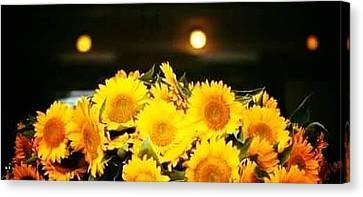 Beauty Flowers  Canvas Print