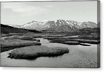 Beauty In Black And White Canvas Print