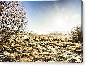 Beauty In Rural Winters Canvas Print