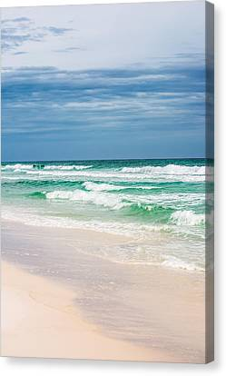 Beauty In The Ocean Canvas Print by Shelby Young