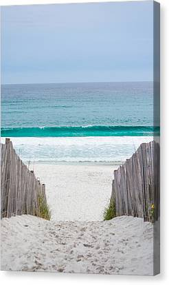 Beauty In The Waves Canvas Print by Shelby Young
