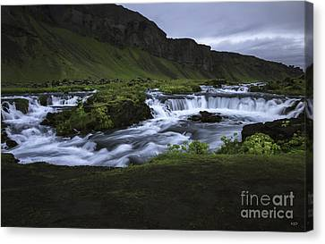 Beauty Is Everywhere In Iceland Canvas Print by Nancy Dempsey