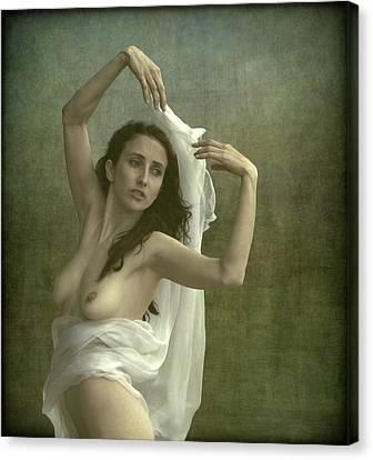 Beauty Canvas Print by Mel Brackstone