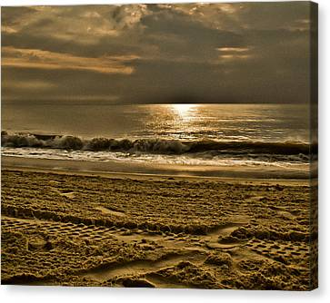 Beauty Of A Day Canvas Print