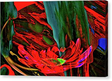 Beauty Of A Flower Abstract Canvas Print