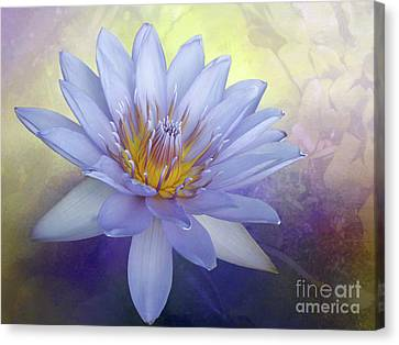 Beauty Of A Waterlily By Kaye Menner Canvas Print