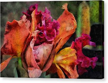 Beauty Of An Orchid Canvas Print by Trish Tritz
