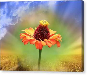 Beauty Of Nature Canvas Print by Cathy Harper