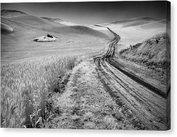 Beauty Of The Open Road Canvas Print by Jon Glaser