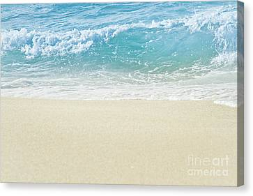 Canvas Print featuring the photograph Beauty Surrounds Us by Sharon Mau