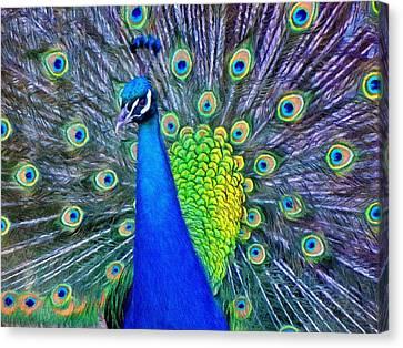 Jeff Kolker Canvas Print - Beauty Whatever The Name by Jeffrey Kolker
