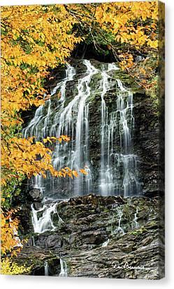 Beaver Brook Falls 8918 Canvas Print by Dan Beauvais