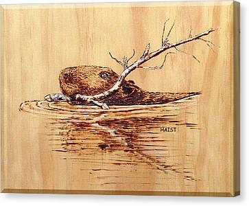 Canvas Print featuring the pyrography Beaver by Ron Haist