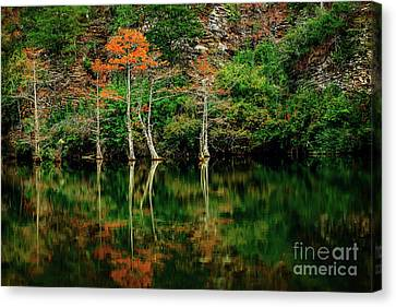 Beaver's Bend Color Explosion Canvas Print by Tamyra Ayles