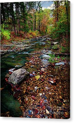 Beaver's Bend Tiny Stream Vertical Canvas Print by Tamyra Ayles
