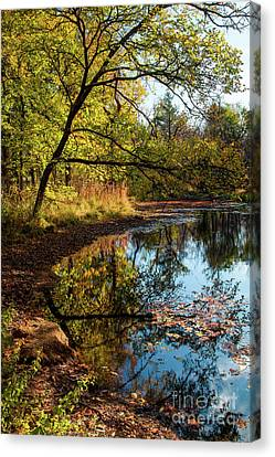 Canvas Print featuring the photograph Beaver's Pond by Iris Greenwell