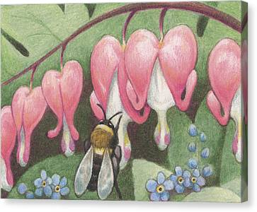Bee And Bleeding Heart Canvas Print