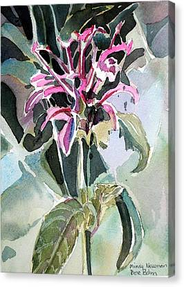 Bee Balm Canvas Print by Mindy Newman