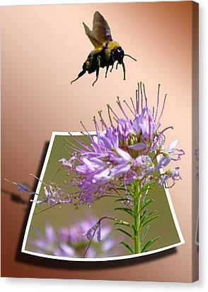 Bee Free Canvas Print by Shane Bechler