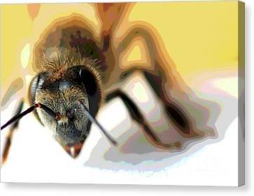 Canvas Print featuring the photograph Bee In Macro 5 by Micah May