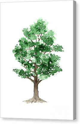 Beech Tree Minimalist Watercolor Painting Canvas Print by Joanna Szmerdt