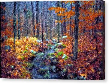 Seurat Canvas Print - Beech Trees In Winter by Jim Murphy