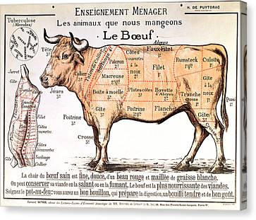 Beef Canvas Print by French School
