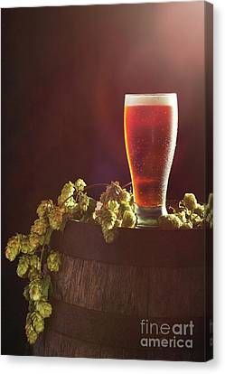 Beer With Hops Canvas Print by Amanda Elwell