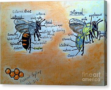 Bees  Canvas Print