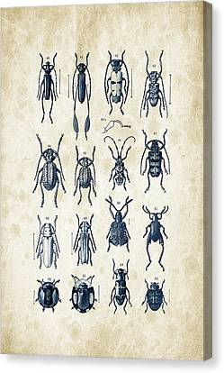 Beetles - 1897 - 04 Canvas Print by Aged Pixel