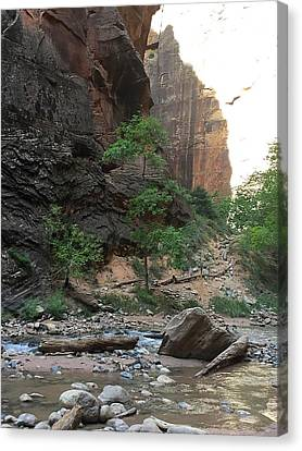 Beginning Of The Narrows Canvas Print by Jennifer Lopez